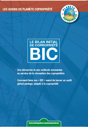 bic-image