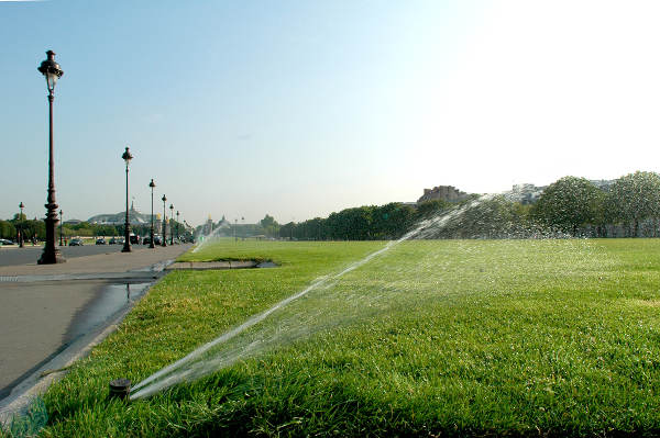 Arrosage des jardins publics par la municipalite, Jardin des Invalides a Paris pendant la Canicule, Juin 2005